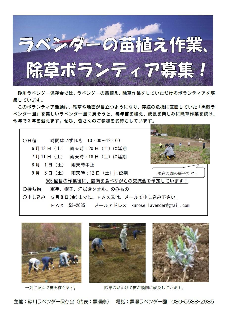 ラベンダーの植替え作業、除草ボランティア募集のポスター