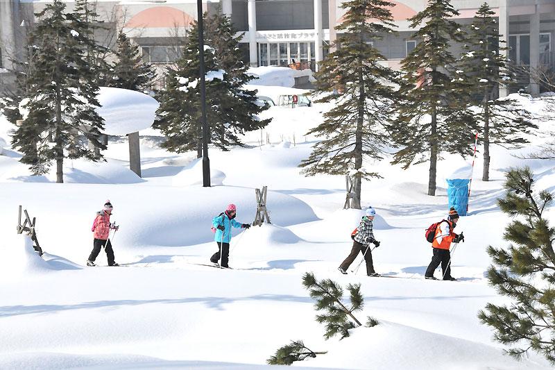 歩くスキーの写真