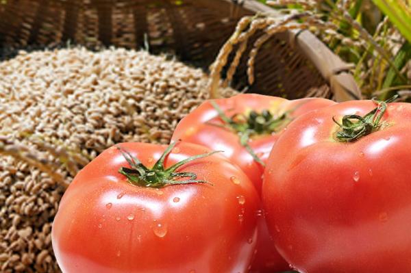 お米とトマトの写真